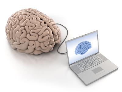 brain_fitness_program